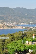 Poros   Saronische eilanden   De Griekse Gids Foto 196 - Foto van De Griekse Gids