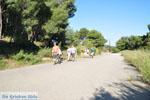 Poros   Saronische eilanden   De Griekse Gids Foto 197 - Foto van De Griekse Gids