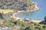 Poros | Saronische eilanden | De Griekse Gids Foto 210 - Foto van De Griekse Gids