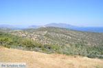Poseidon heiligdom Poros | Saronische eilanden | De Griekse Gids Foto 230 - Foto van De Griekse Gids