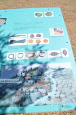 Poseidon heiligdom Poros | Saronische eilanden | De Griekse Gids Foto 238 - Foto van De Griekse Gids